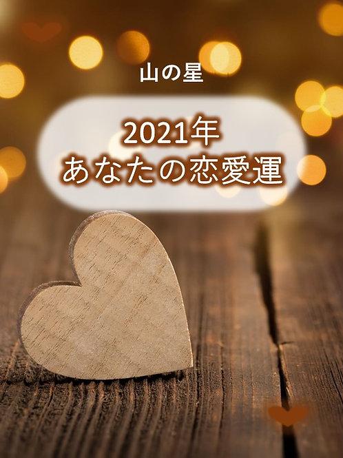 山の星の恋愛運2021