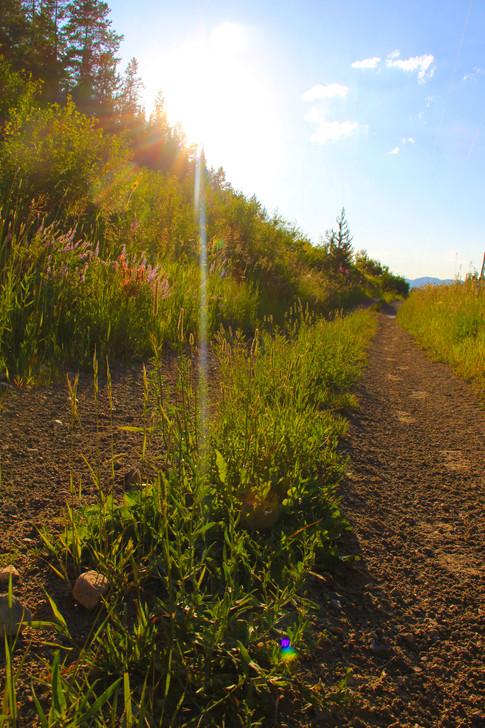 Teton Springs Trails