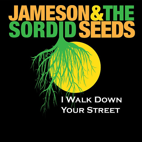 I Walk Down Your Street - CD