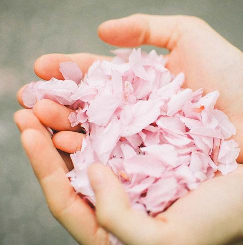 flower-petals-hand.jpg