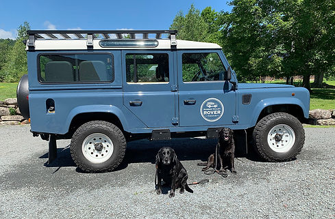 rover-logo-dogs.jpg