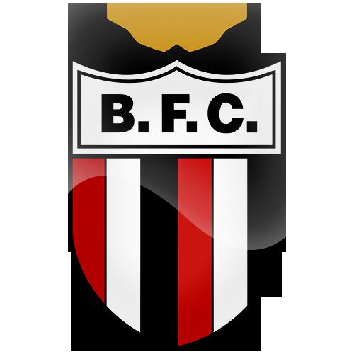 Botafogo FC-BRA.png