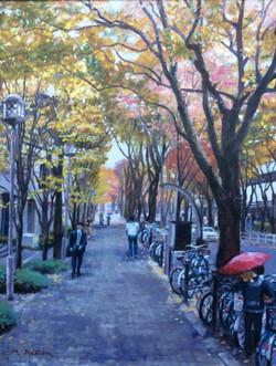京橋オフィス街の秋