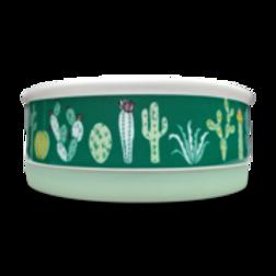 Indie Boho - Cactus Garden Ceramic Bowl