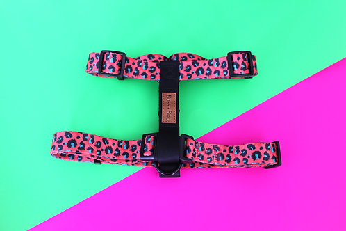 Boss + Boo - Spotted Cheetah Harness
