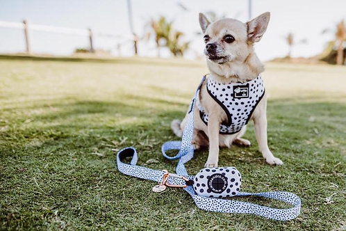 Willa + Co -  Spotty adjustable harness