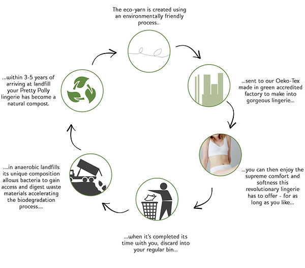 Eco Flow Chart.jpg