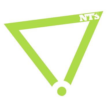 nts-bug