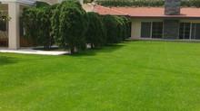 Kemerburgaz Villa Bahçesi