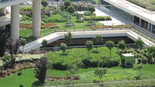 Kentlere nefes aldıran çevreci yeşil çatı sistemi