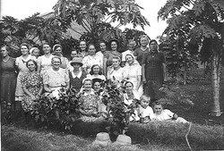 05 Peanut planters c1943
