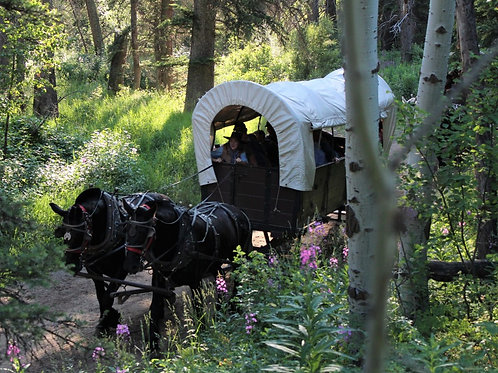 Jackson Hole Covered Wagon Cookout
