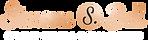 simone-logo.png