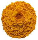 Lichen Installation Orange 2.jpg