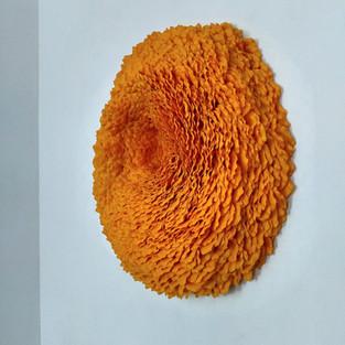 Lichen 4 (marigold), 2020