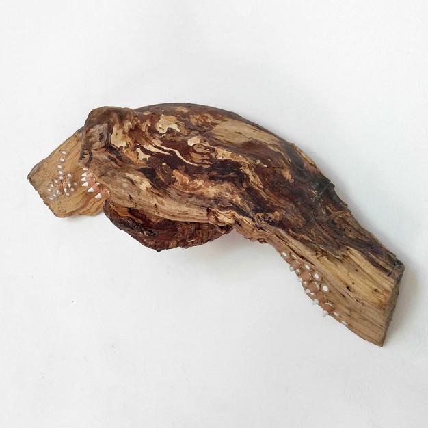 Found wood, pencils, polyurethane, silicone  7 x 16 x 6 in / 18 x 40.5 x 15 cm 2020