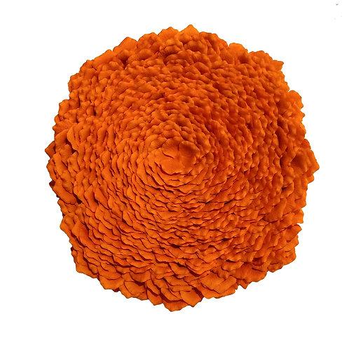 Sunburst Lichen (Limited Edition)