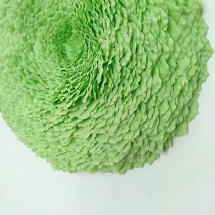 Lichen 10 (green), 2020