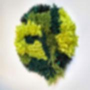 """""""Bryophyta""""; 10 in x 10 in x 5 in; 25 cm x 25 cm x 13 cm  April,2019"""