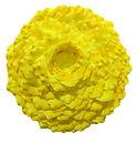 Lichen Installation Yellow 2.jpg