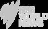 sbs news logo.png
