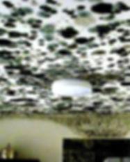Mold Ceiling2.jpg
