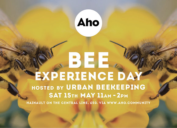 Bee Experience Day! Sat 15th May, 11am-2pm