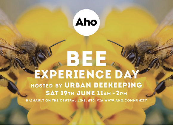 Bee Experience Day! Sat 19th June, 11am-2pm