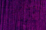 AS Artists' Oil Colours Flinders Red Violet