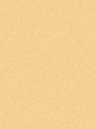 AS Colourfix Original Pastel Paper Rich Beige