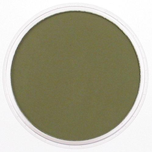 22201 PanPastel 9ml Pan - Hansa Yellow Extra Dark