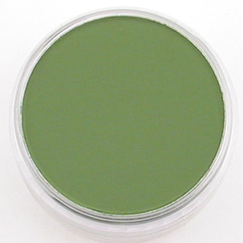 26605 PanPastel 9ml Pan - Chromium Oxide Green