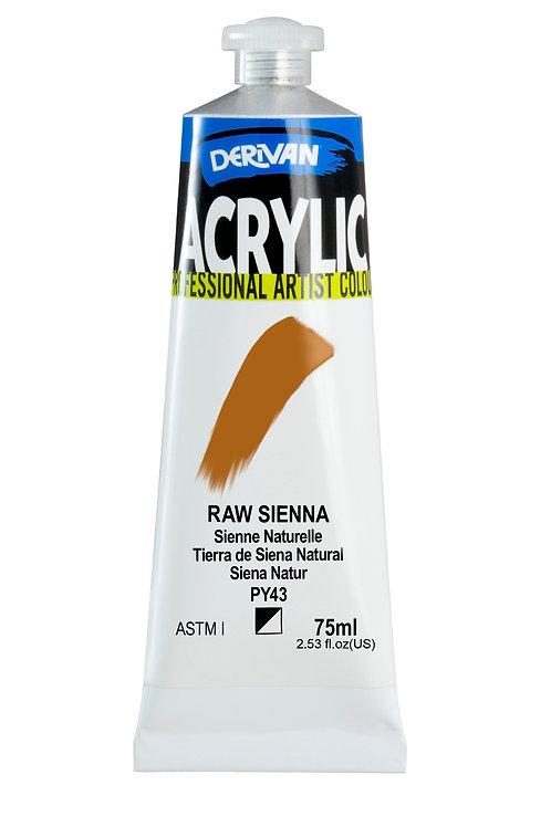 Derivan Acrylic - Raw Sienna