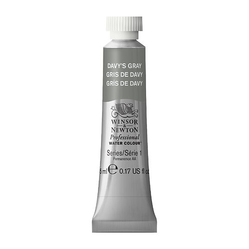 217 W&N Professional Water Colour - Davey's Gray