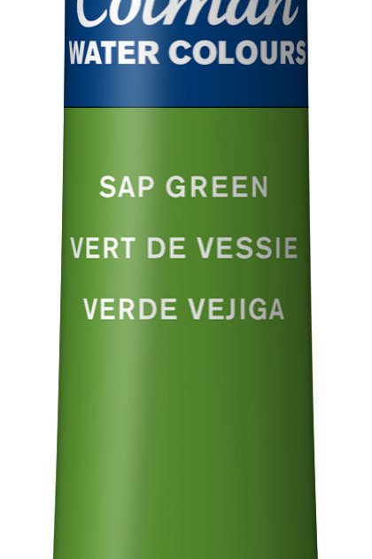 599 W&N Cotman Water Colour - Sap Green