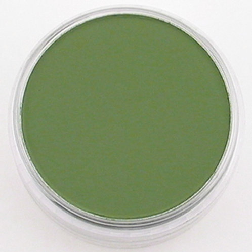 26603 PanPastel 9ml Pan - Chromium Oxide Green Shade