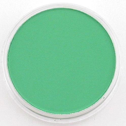 26405 PanPastel 9ml Pan - Permanent Green