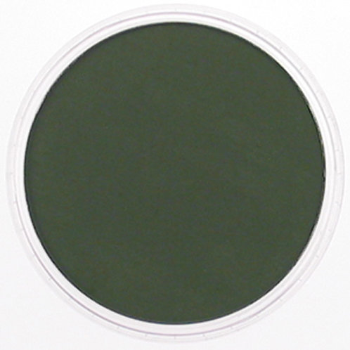 26601 PanPastel 9ml Pan - Chromium Oxide Green Extra Dark