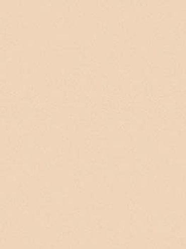 AS Colourfix Original Pastel Paper Australian Grey