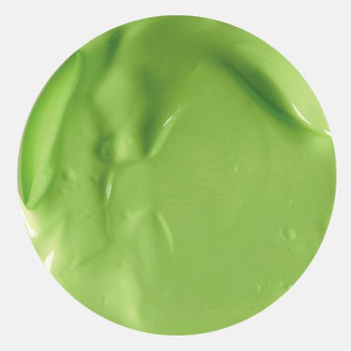 Aquacryl Premium Acrylic Paint Light Green