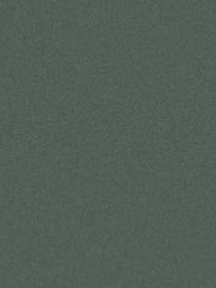 AS Colourfix Original Pastel Paper Leaf Green Dark
