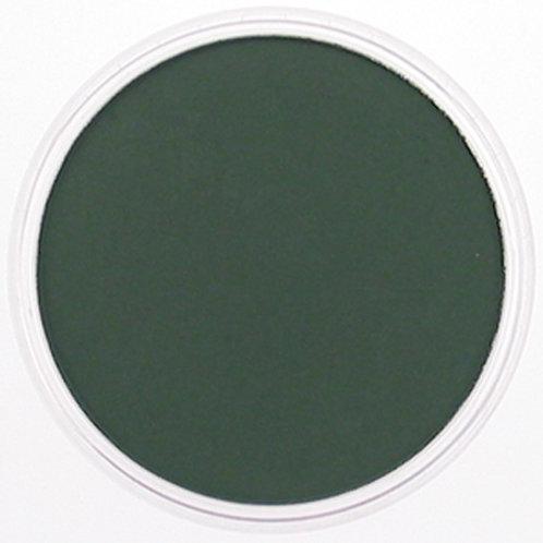 26401 PanPastel 9ml Pan - Permanent Green Extra Dark