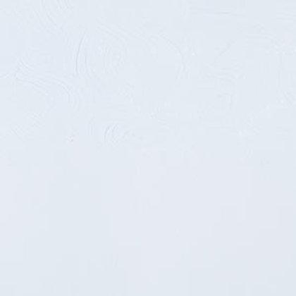 Gamblin Artist's Oils Cool White