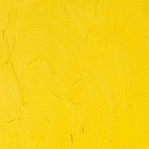 1170 Gamblin Fastmatte Oil Colour 37ml - Cadmium Yellow Light