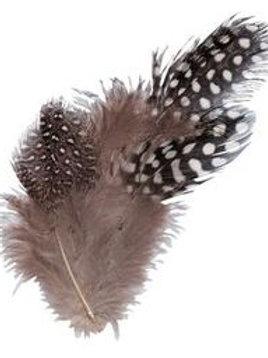 FT200-NA CS Feathers - Guinea Fowl Natural