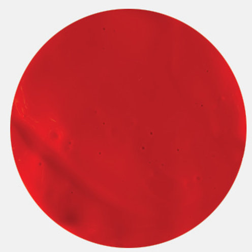 Aquacryl Premium Acrylic Paint Warm Red