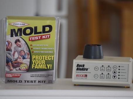 Home DIY mold test kit Vs. Professional air sampling