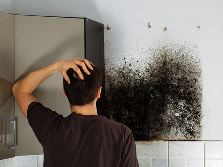 What comes first, the water intrusion or the mold?