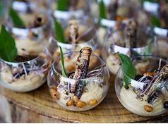 Les insectes dans vos assiettes