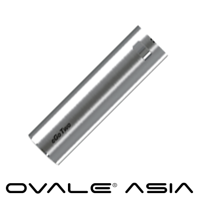 eGo TWO™ Battery SILVER